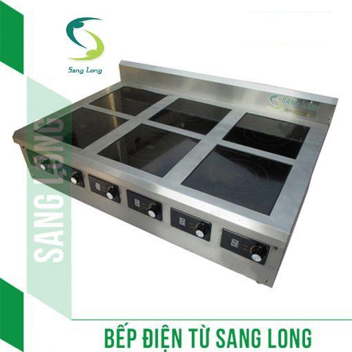 bếp từ công nghiệp 5kw 6
